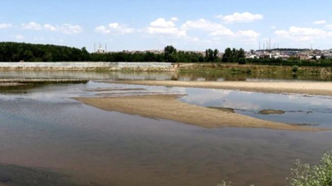 Bulgaristan'da Meriç Nehri'nden su içen ineklerin telef olduğu iddiası üzerine Türkiye harekete geçti