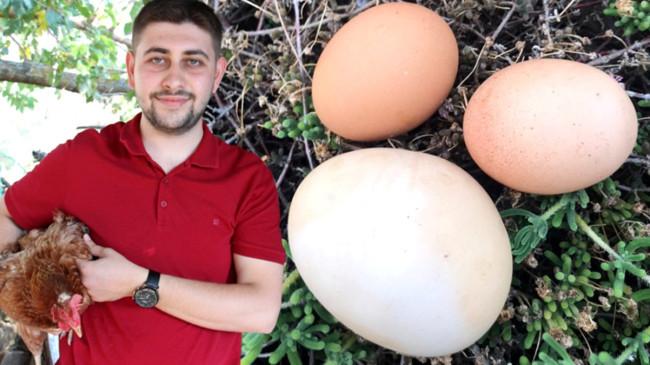 İriliğiyle dikkati çeken yumurtanın içinden bir yumurta daha çıktı