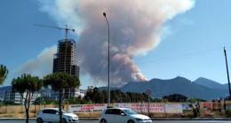 İzmir'de büyük orman yangını! Dumanlar şehirden görülüyor