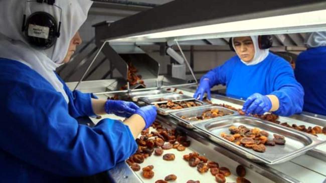 Türk firmaları koronavirüs salgınını fırsata çevirdi! Gıda ihracatı ilk 5 ayda yüzde 118 arttı